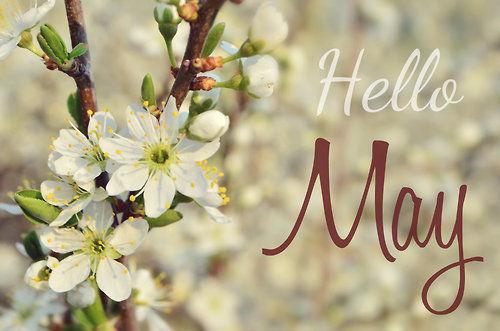252778-Hello-May